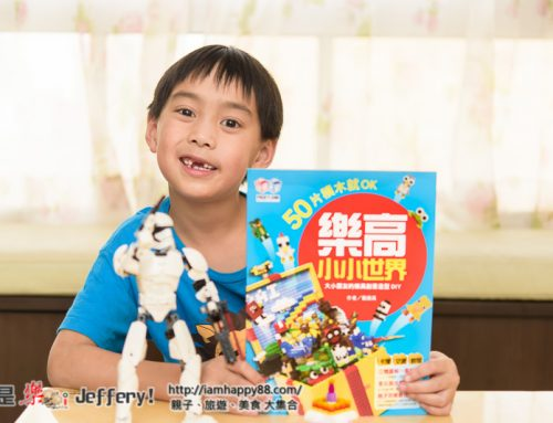 【樂高Lego積木玩具秘笈】樂高小小世界:50片積木就OK!大小朋友的樂高創意造型DIY《阿成的心得體驗》