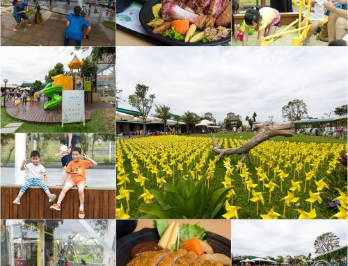 【台中親子餐廳】《赤腳ㄚ生態農莊》聚餐、聚會、開趴人氣熱門休閒景點!