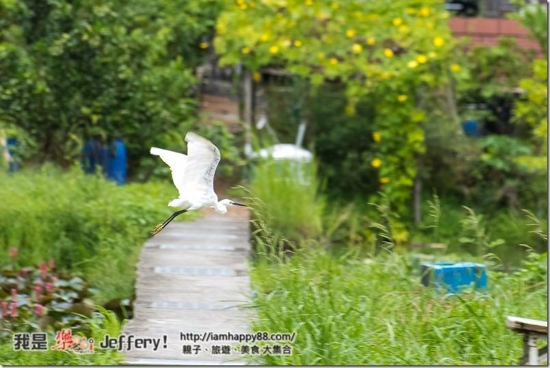 20160905-Shuangxi-DSC_6517-s