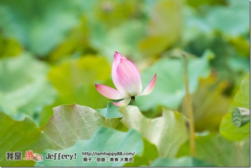 20160905-Shuangxi-DSC_6560-s