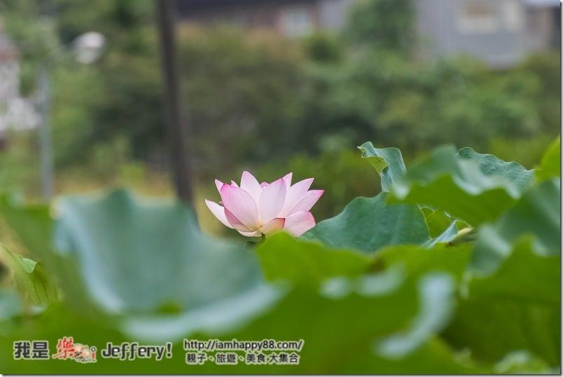 20160905-Shuangxi-DSC_6565-s
