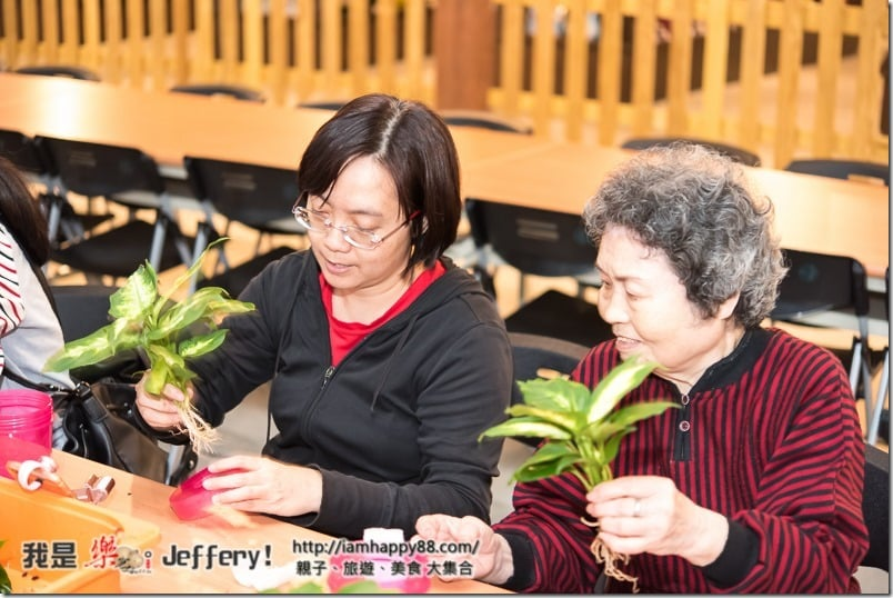 20170106-DSC_8194-jiaosi-evergreen-S