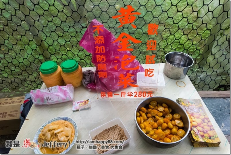 20170107-DSC_8588-jiaosi-evergreen-S