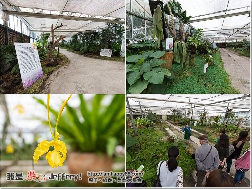20170118-05-jiaosi-evergreen-jiaosi-evergreen-S