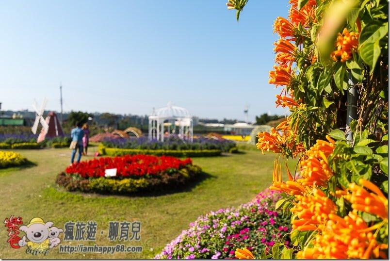 20170122-DSC_9090-flowerjs-s