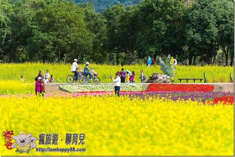 20170205-DSC_1760-recreation-forest-s