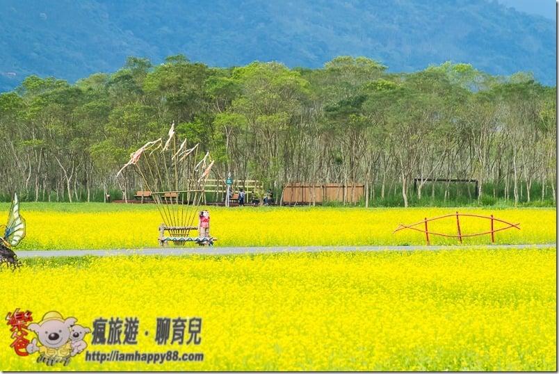 20170205-DSC_1797-recreation-forest-s