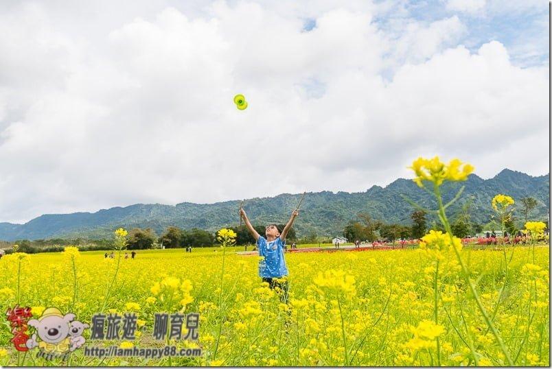 20170205-DSC_1837-recreation-forest-s