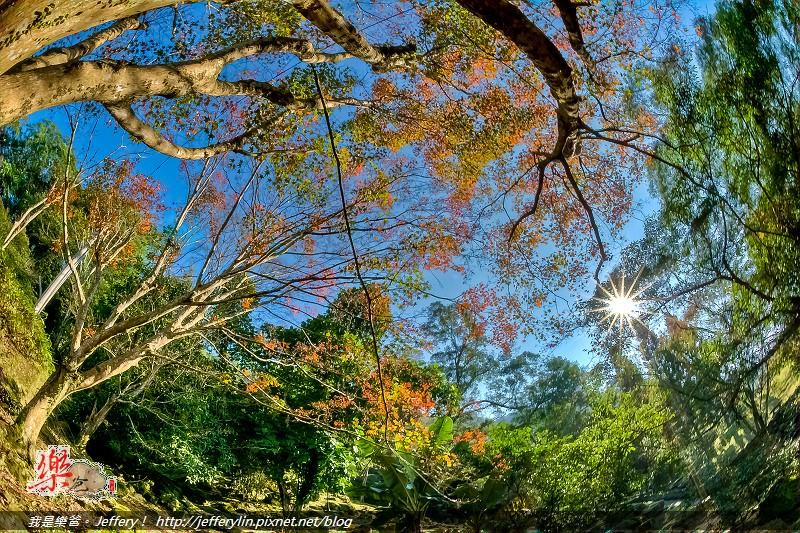 20121213-dsc_0108_09_10_t-p